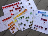 Color charts from our continuing projects.